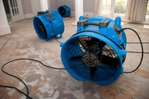 water removal services Columbus OH